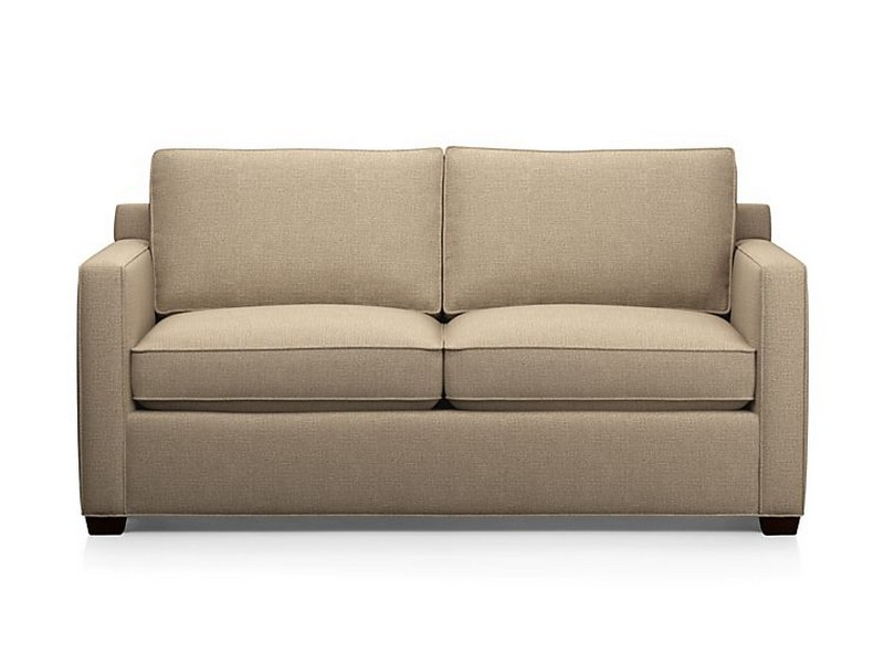 Apartment Sleeper Sofa
