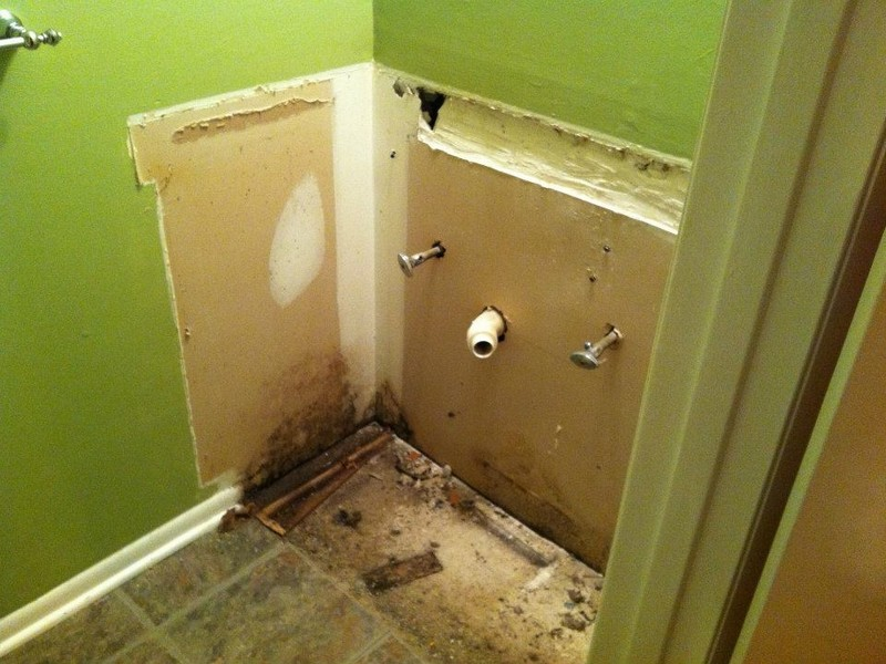 Bathroom Mold Removal Drywall
