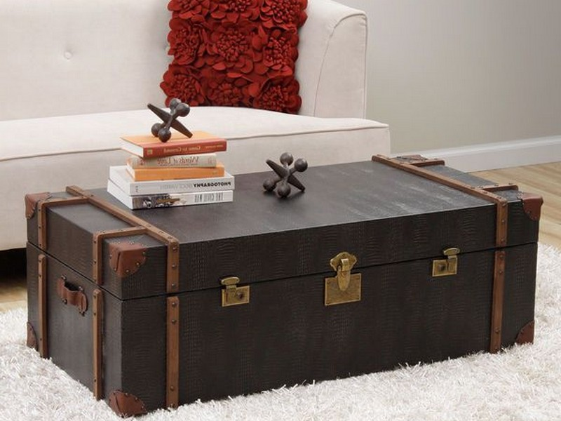 Black Trunk Coffee Table