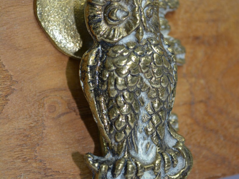 Brass Owl Door Knocker