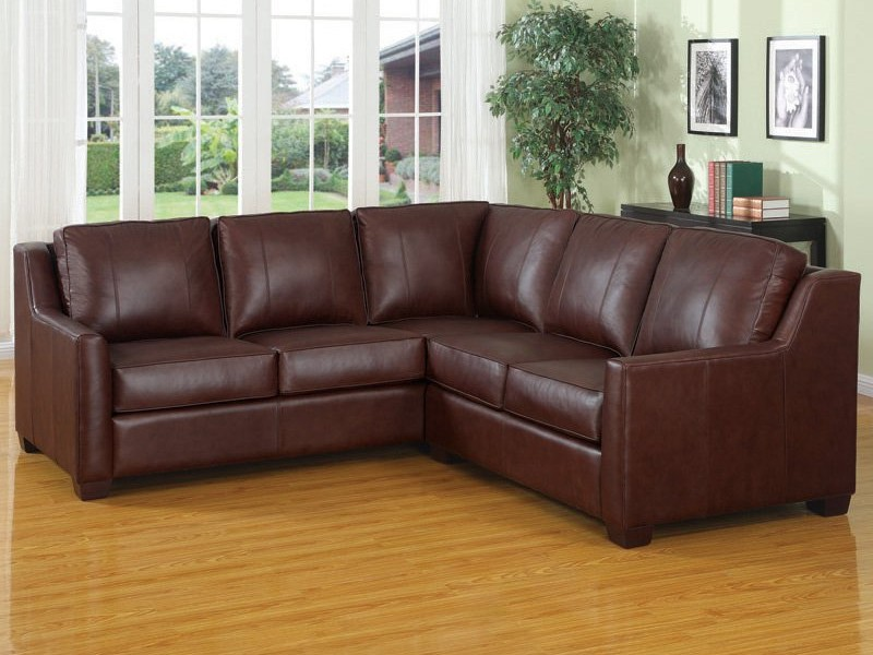 Brown Sectional Couches
