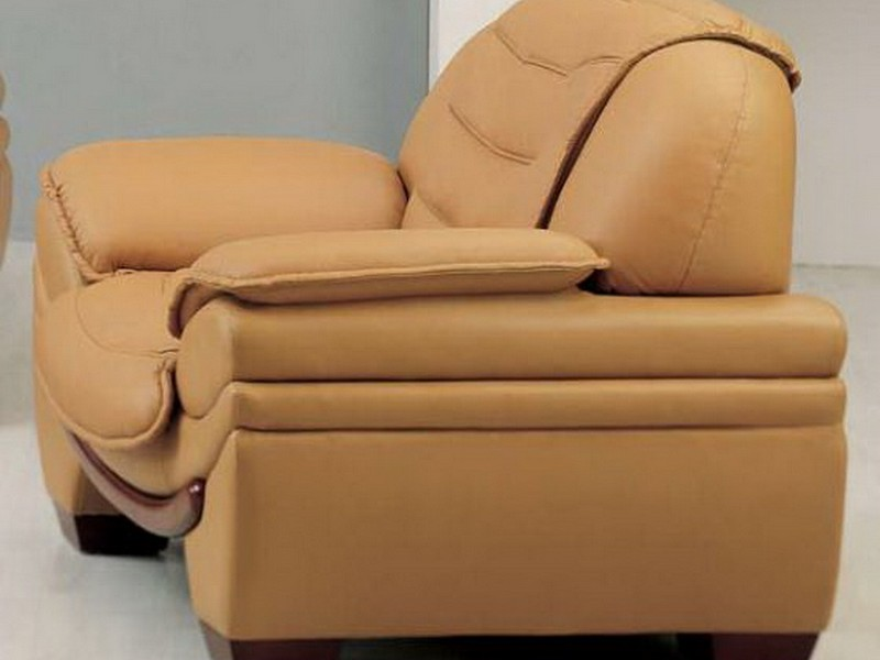 Camel Color Leather Chair