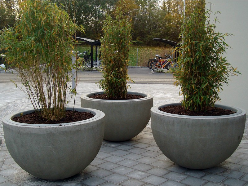 Cement Flower Pots