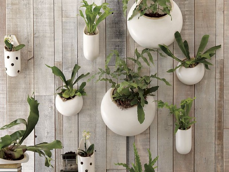 Ceramic Wall Planters Outdoor