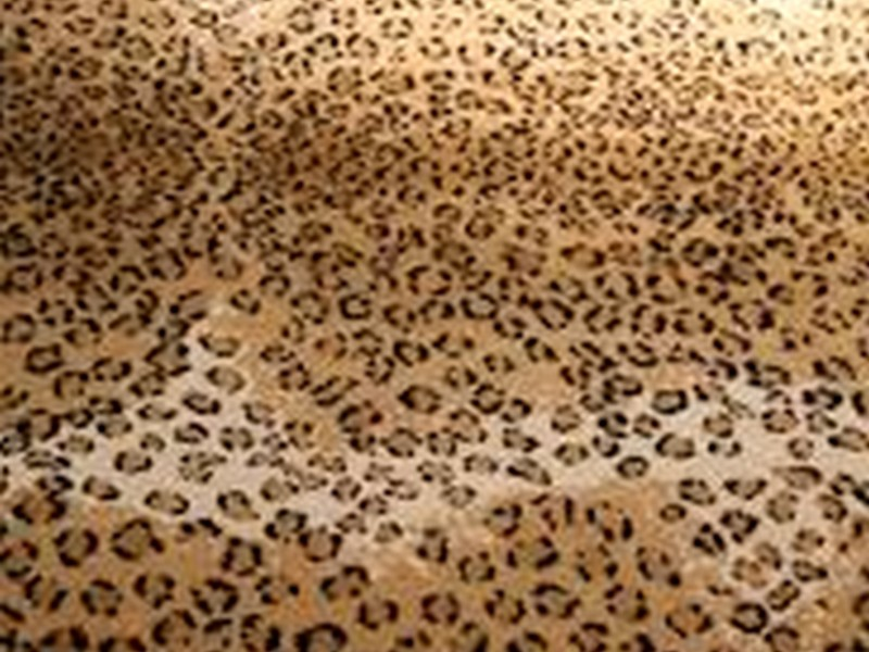 Cheetah Print Rug Cheap