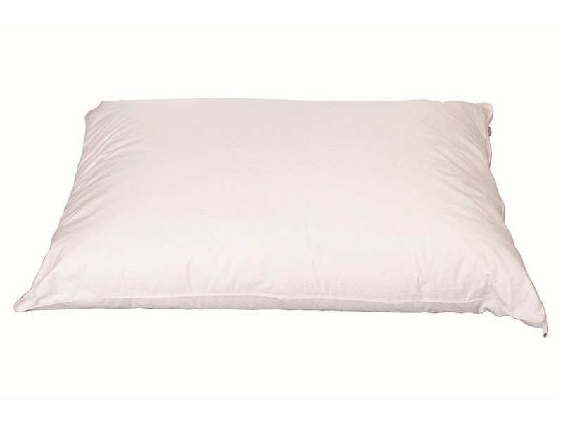 Cloud Nine Comforts 50 Pillow