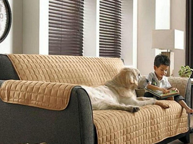 Couch Slip Covers For Pets
