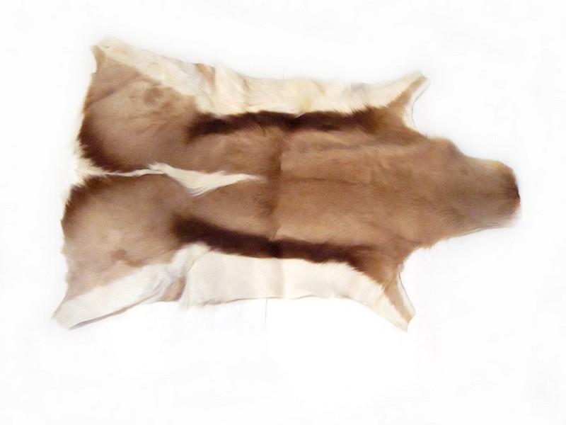Diy Deer Skin Rug