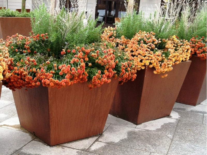 Extra Large Planters For Trees
