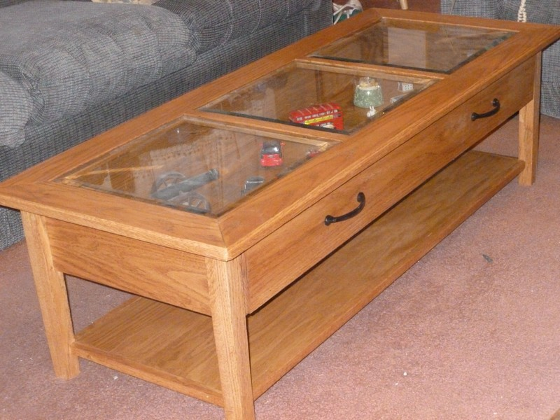 Glass Coffee Table Display Case