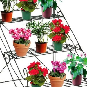 House Plant Pots Uk