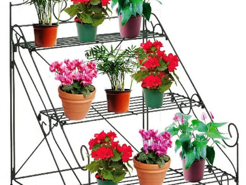 House Plant Pots Uk