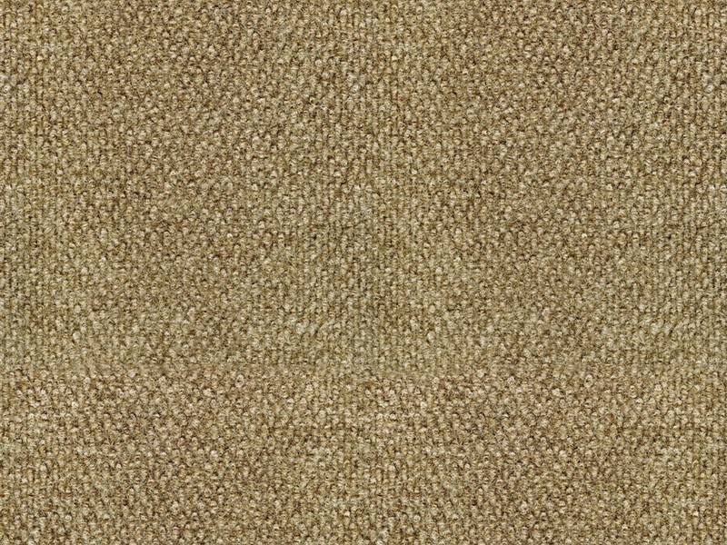Indoor Outdoor Carpeting At Lowes