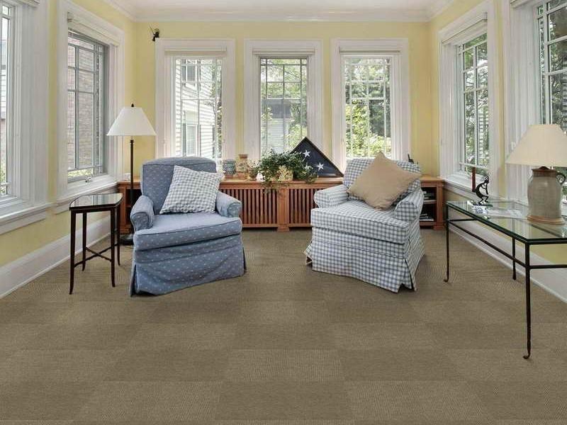 Indoor Outdoor Carpeting Menards
