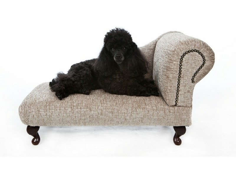Large Dog Chaise Lounge