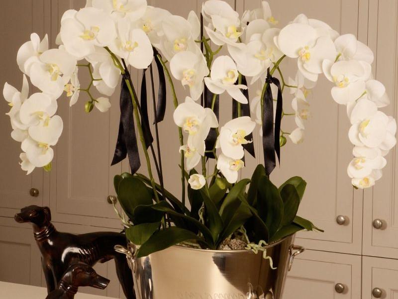 Large Faux Orchid Arrangements