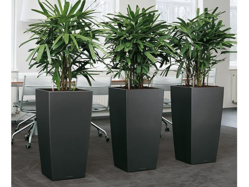 Large House Plant Pots