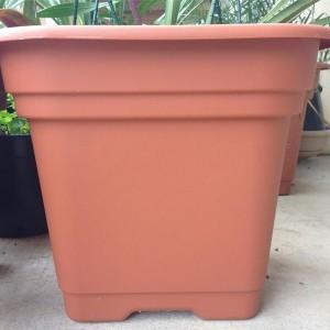 Large Plastic Plant Pots