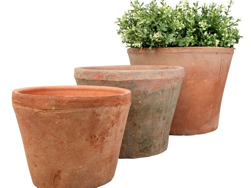 Large Terracotta Planters Uk