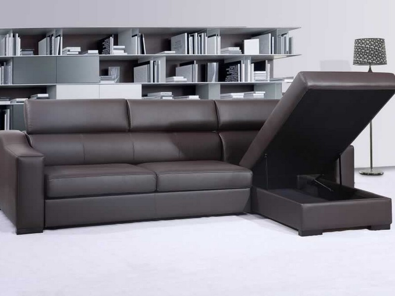 Leather Sectional Sleeper