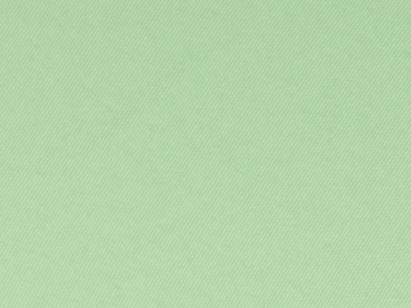 Mint Green Napkins Cloth