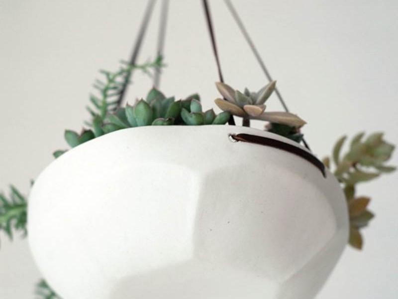 Modern Indoor Hanging Planters