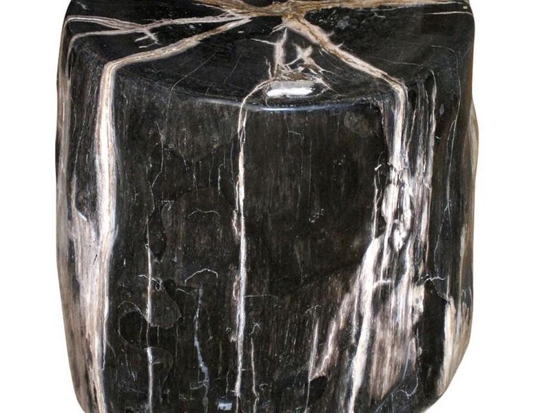 Petrified Wood Stump Side Table