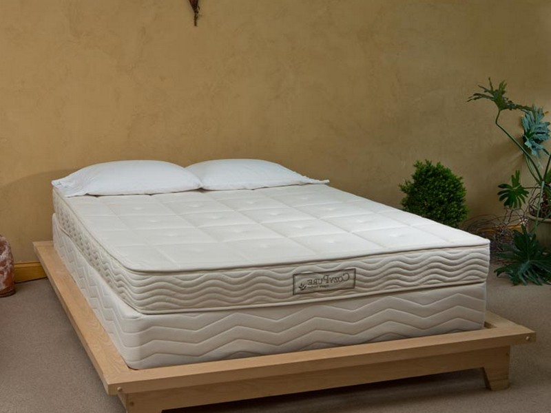 Platform Bed Box Spring Mattress