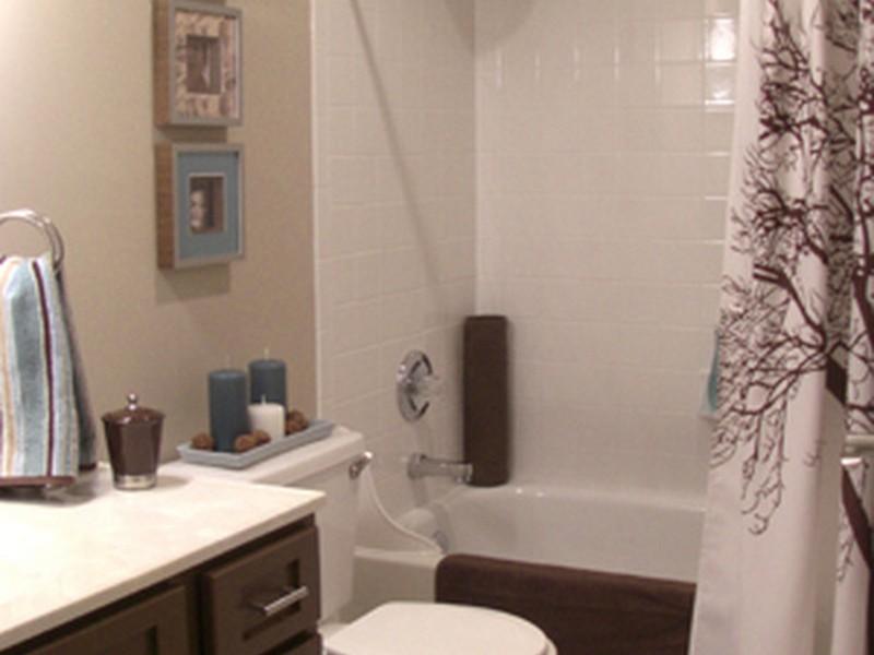 Redo Bathroom Cheap