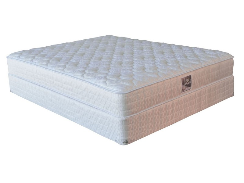 Sears Queen Mattress Only