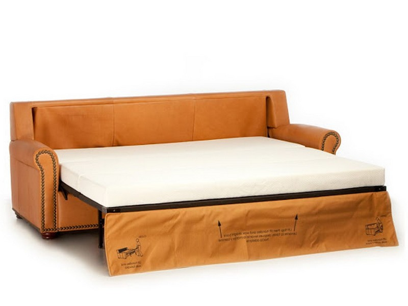 Sleeper Love Seat