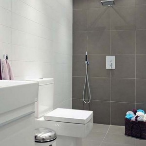 Small Bathroom Remodels Grey