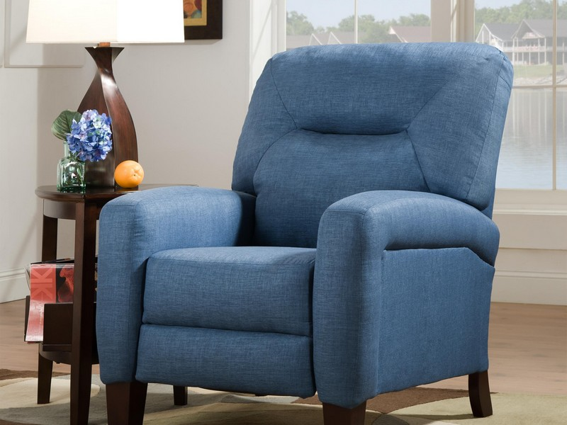 Southern Motion Recliner