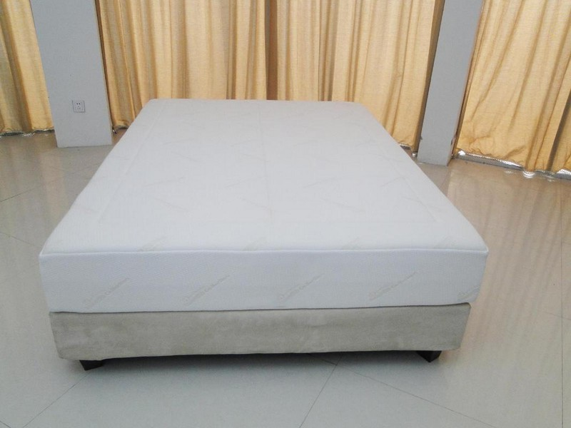 Tempur Pedic Queen Mattress Protector