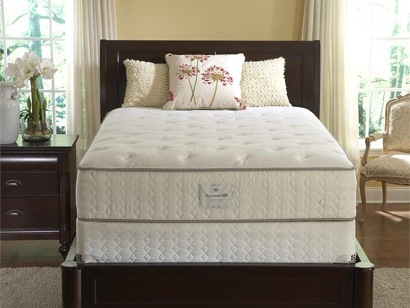Twin Long Mattress Size