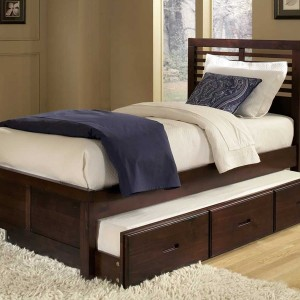 Twin Size Bed With Trundle And Storage