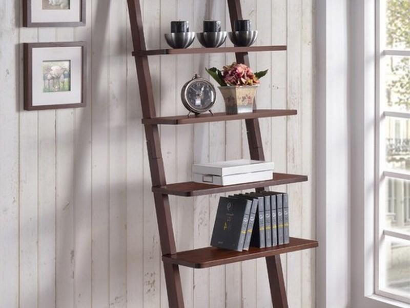 Wall Ladder Shelf