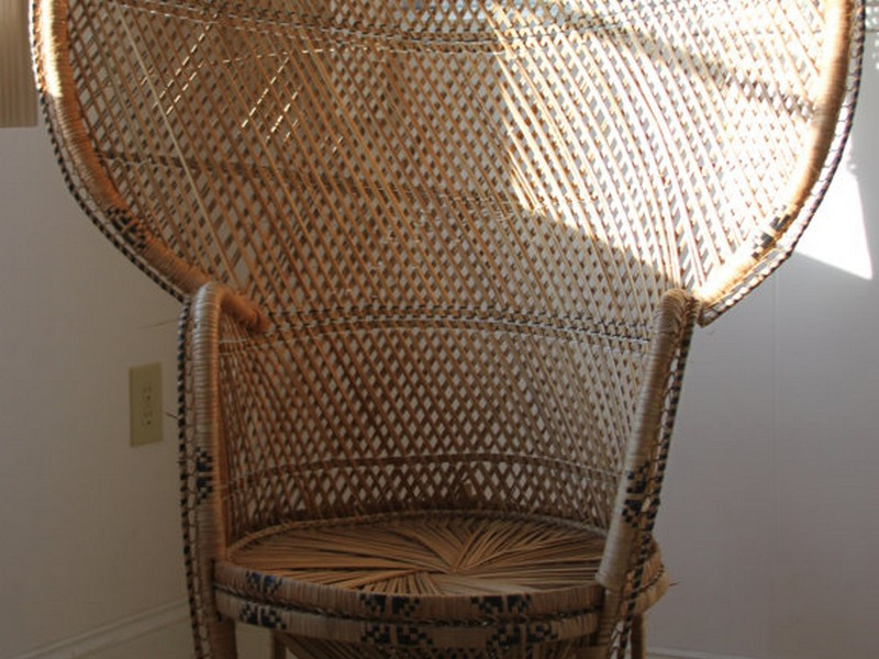 Wicker Fan Back Chair