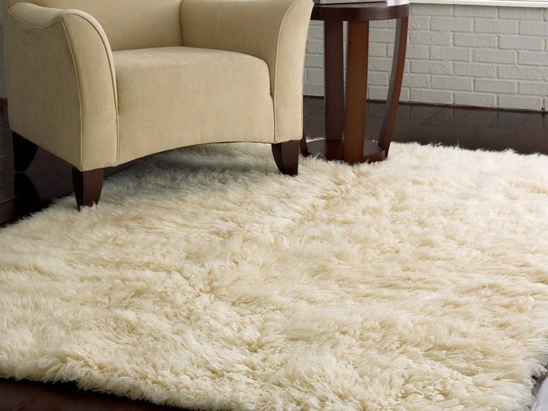 Wool Carpet Pros And Cons