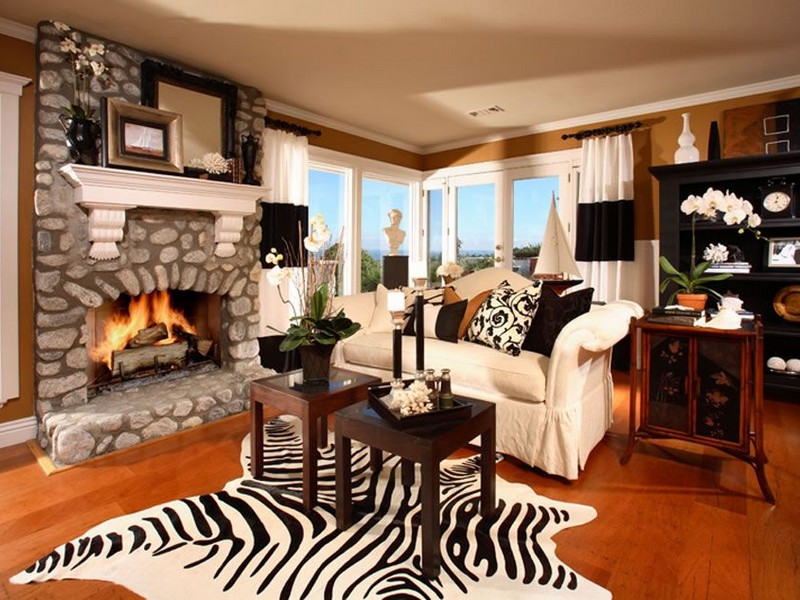 Zebra Print Pillows And Rugs